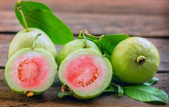 Lợi ích từ trái ổi cho sức khỏe